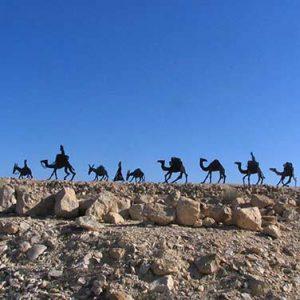 desert-tour-nomad