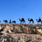 Why Hire a Private Tour Guide in Israel
