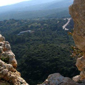 waterfall-israel-tours